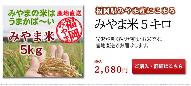 【厳選産地直送】福岡県みやま市産 みやま米(にこまる) 5kg入