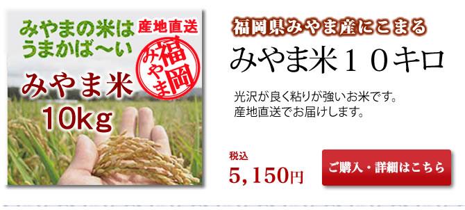 【厳選産地直送】福岡県みやま市産 みやま米(にこまる) 10kg入